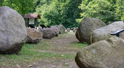 Mehr zu Geologischer Garten Stolzenhagen
