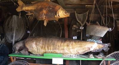 Mehr zu Fischereimuseum Schwedt/Oder